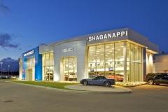 Shagganappi GM
