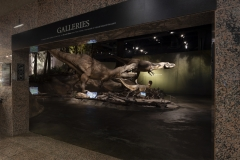 exhibits entrance